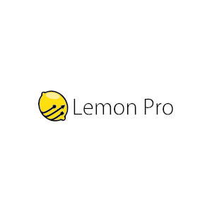 Opieka informatyczna dla firm - LEMON PRO